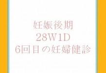 28W1D 6回目の妊婦健診