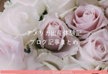 日本人夫婦のアメリカ妊娠出産ブログ記事のまとめ