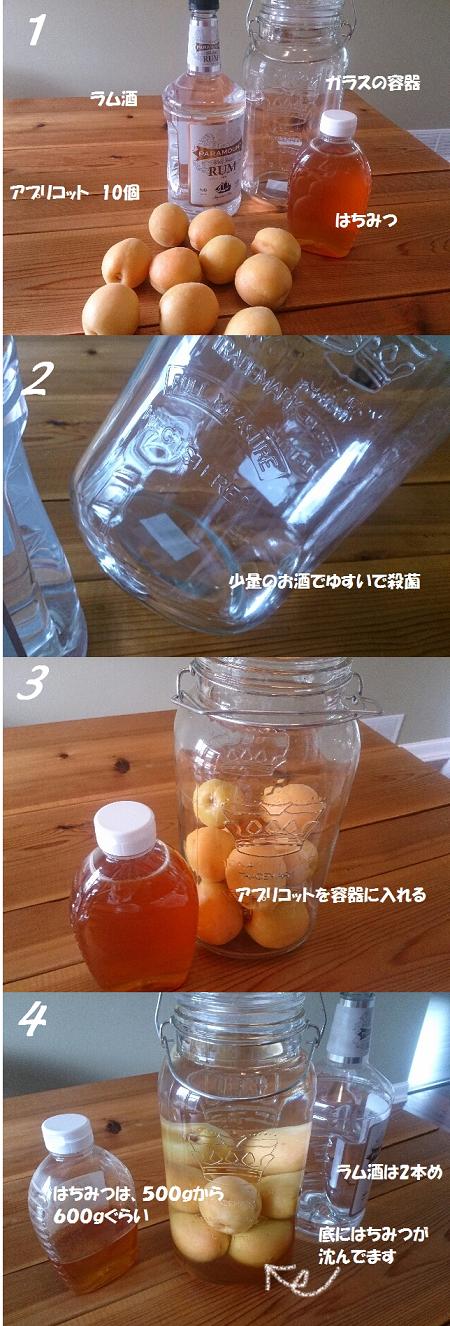 アメリカでアプリコット酒を作る方法