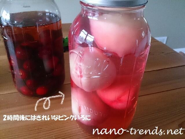 モモの果実酒の色