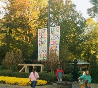 ワシントン国立動物園。入園は無料なので、動物園が大きか公園のよう。ジョギングしたり、散歩したり。気軽に来れるひとがうらやましくなるぐらい。子ども連れなら1日遊べますよー。
