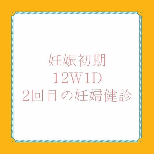 アメリカ出産体験記12W1D妊婦健診