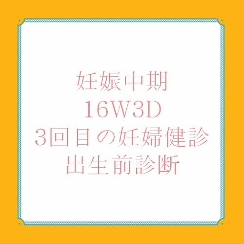 アメリカ出産体験記16W3D妊婦健診と出生前診断