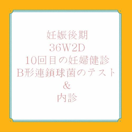 アメリカ出産体験記 36W2D