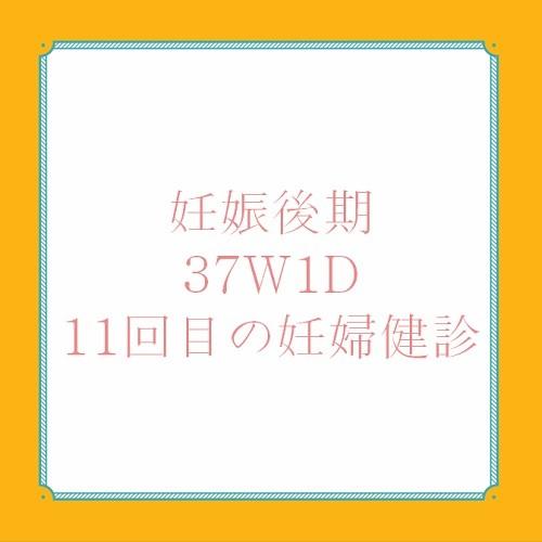アメリカ出産体験記 37W1D