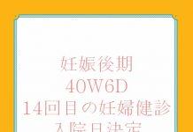 アメリカ出産体験記 40W6D