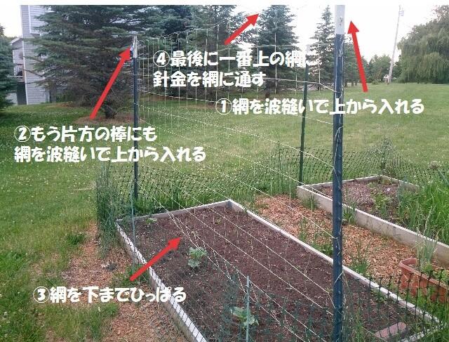 キュウリなどを育てるネットの張り方