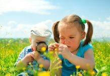 おもちゃを使わない遊び方が学べるZ会の幼児コースレビュー