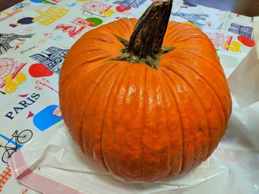 ハローウィンの観賞用のかぼちゃ特大
