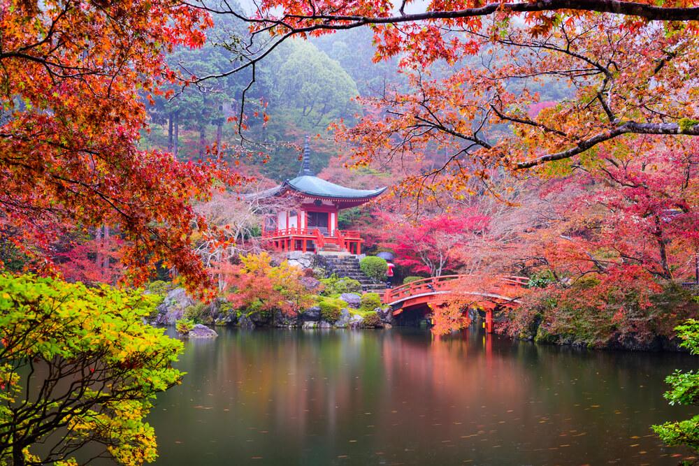 100の夢リストがかなって日本に3ヶ月滞在した